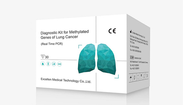 Diagnostic kit for methylated genes of Lung Cancer